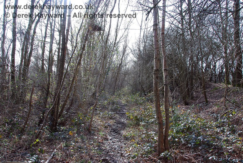 The permissive footpath continues west, and this view, looking west, shows that the area is somewhat overgrown.