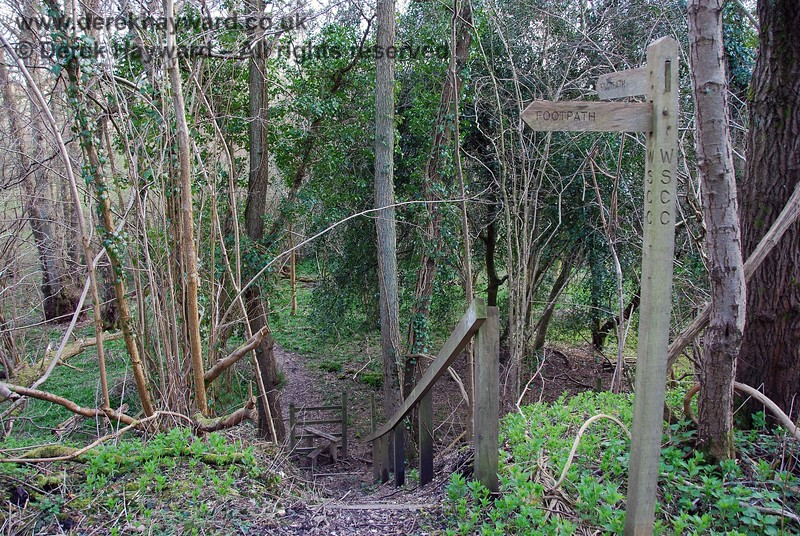 About half way along the cleared section the permissive footpath turns south down the south side of the embankment.