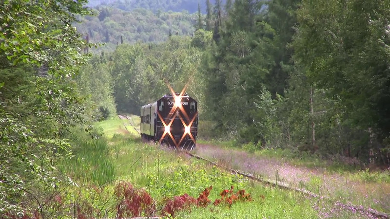 Timber Train August 2008