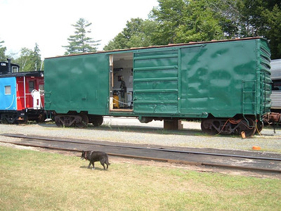 Reagan passes the newest resident  to the yard. Tom's rolling workshop currently under construction and paint.