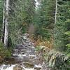 seasonal stream