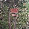 approaching from Dakota Creek forest road