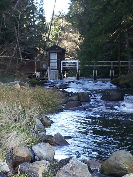 In peak flow times this is a lovely little stream draining the lake.