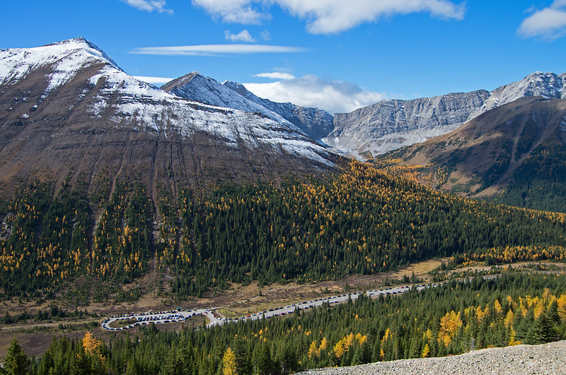 Peak larch in Kananaskis on September 25. Good weather brought the crowds to Highwood Pass.