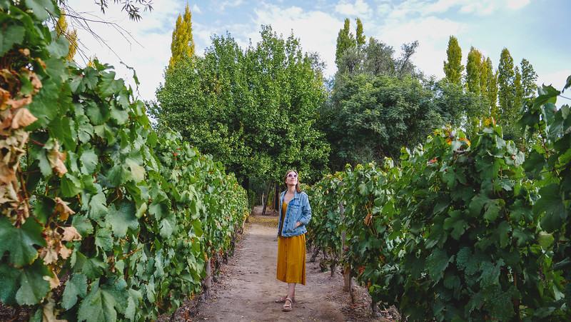 Audrey in the vineyards at Finca Adalgisa.