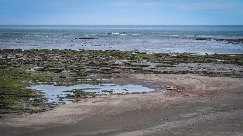 The shores of Punta Delgada