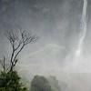 Iguazu 8