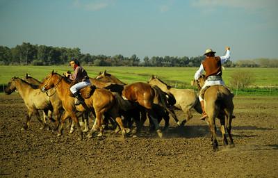 Gauchos, ranch, Argentina