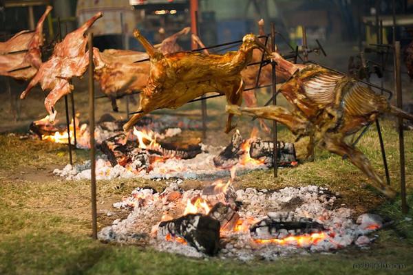 Festival de Doma - Rawson - San Juan