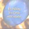 40) Walking in a Circle with Sacadas