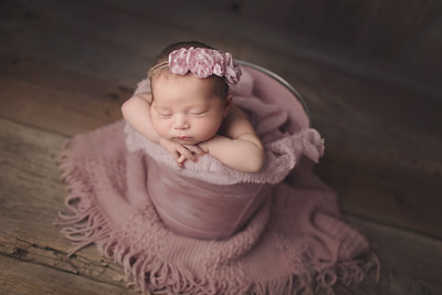 aria rose newborn mini