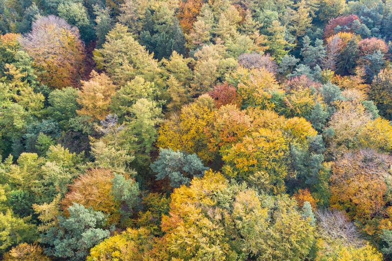 Kilder, Netherlands - oktober 2020