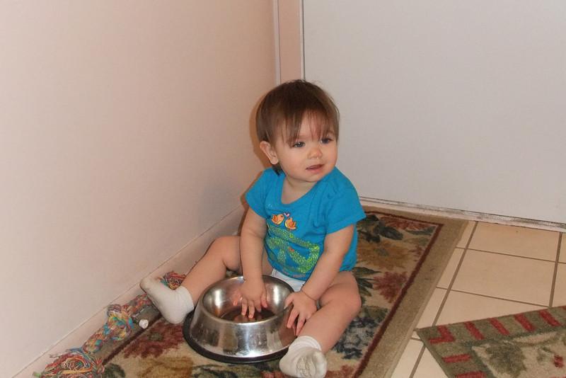 I just love Heidi.<br /> She has a bigger bowl than me!