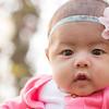 Baby Ariana-6996