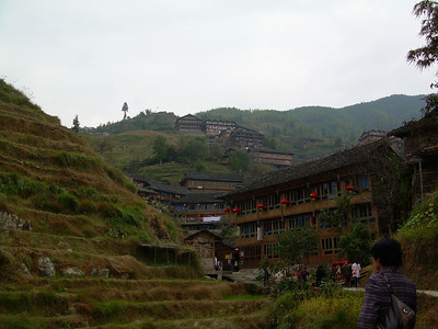 Longji rice paddies