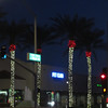 Our palm trees around town all decked out for the holidays!
