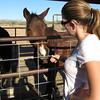 Tanya, horse whisperer? :)