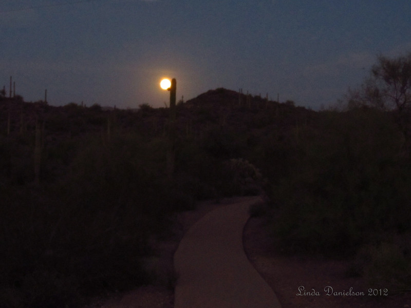 Blue Moon rising near Superstition Mountains.  This path is located at the Needle Vista viewpoint