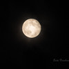 August Blue Moon 8/31/2012