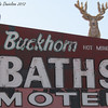 Sign.  Buckhorn Motel, Mesa AZ