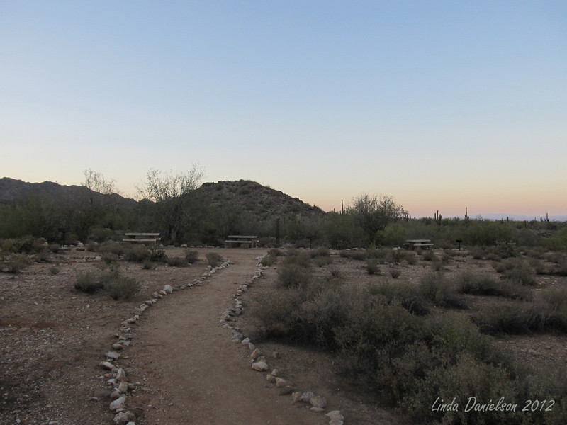 White Tank Mountain Regional Park, we arrived a few minutes before dusk; taking a moonlight hike in the desert!