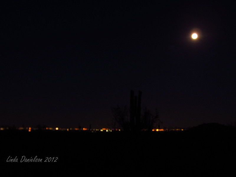 The lights of Phoenix suburbs and the supermoon on our Moonlight Hike in White Tank Mountains, Waddell AZ