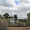 A view of the lake in Red Mountain Park