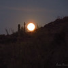 Blue Moon rising, near Superstition Mountains