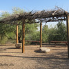 "How native american's made a ""pergola"" using sticks... <br /> I'd love to do something like this in my backyard!  <br /> (Think my neighbors would object? haha)"