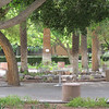 Doesn't this look like an enchanting place to have a cup of morning coffee?  ASU campus