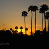Sunset and palm trees, you'd almost think there was a beach in there somewhere... Freestone Park, Gilbert AZ