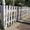 white picket fence<br /> Mesa Historical District, Mesa AZ