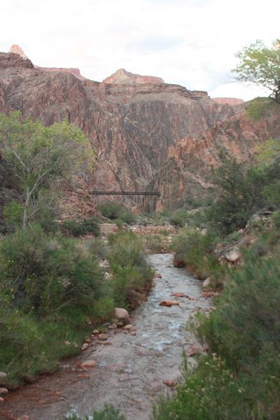 Bright Angel Creek #1