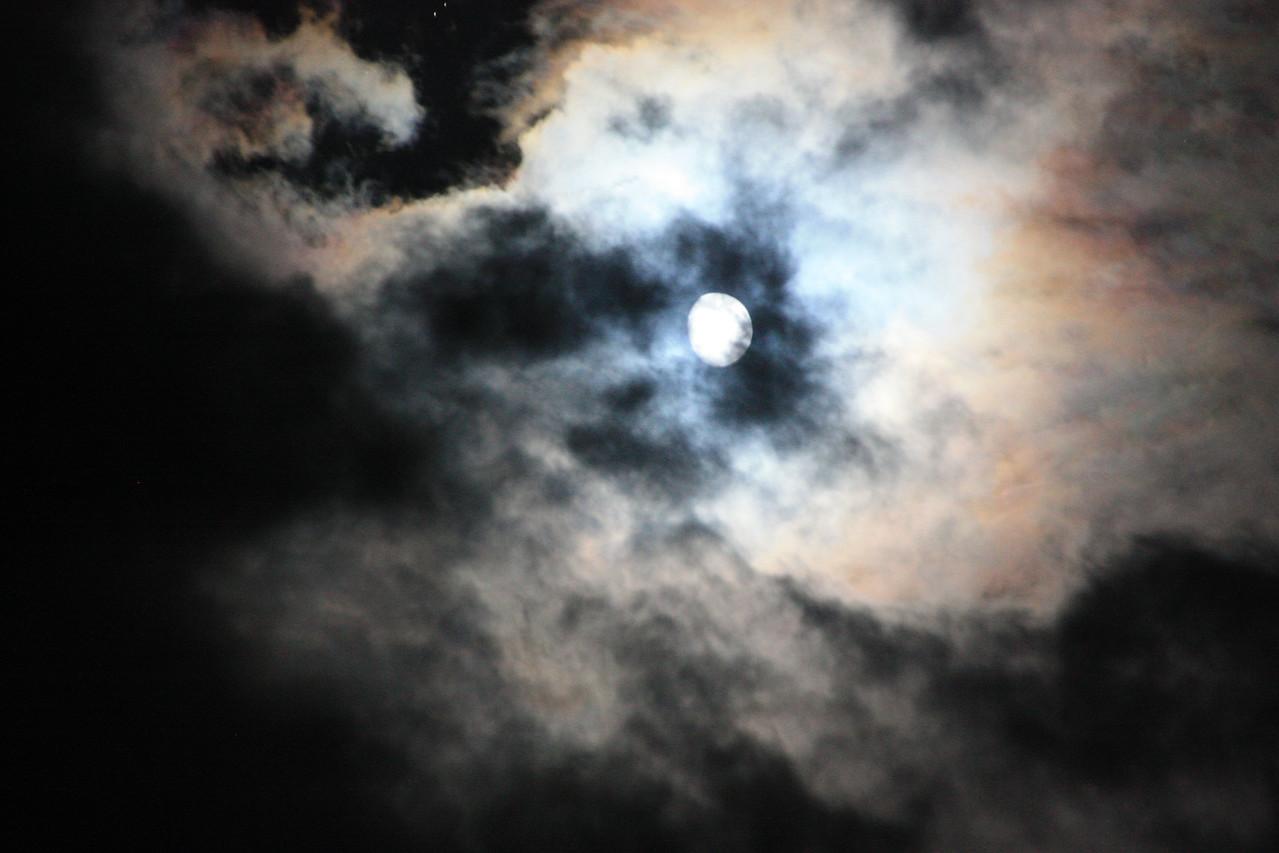 Night Sky #1
