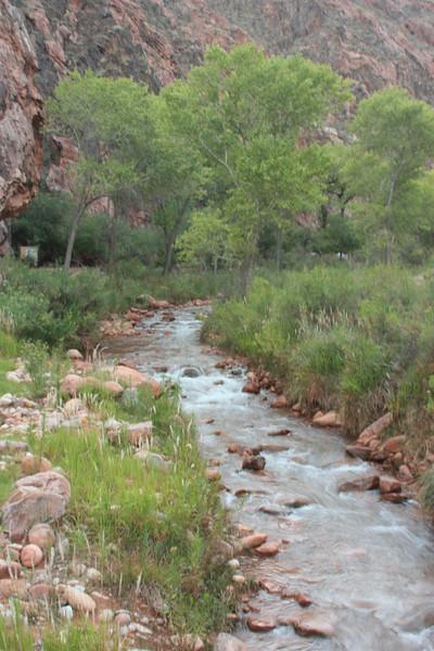 Bright Angel Creek #2