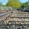 RailRoad Tracks in the Park