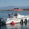 peoria fb199 boat