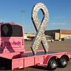Pink Heels ribbon