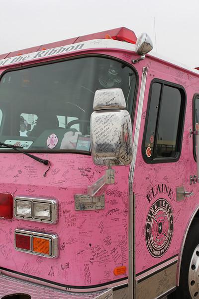 Pink Heals Tour - Elaine