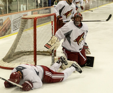 Arizona Coyotes Prospects Camp July 07 2015  027