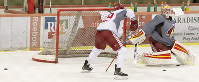 Arizona Coyotes Prospects Camp July 07 2015  012