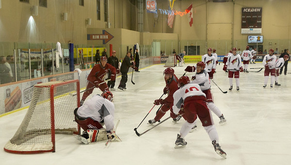Arizona Coyotes Prospects Camp July 07 2015  022