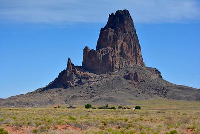 Arizona: El Capitan 2016