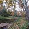 Fall colors at the East Verde River near the Mogollon Rim in Payson, AZ (Fall 2012)