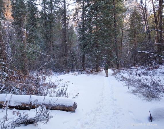 Sedona's West Fork Oak Creek Trail in Winter