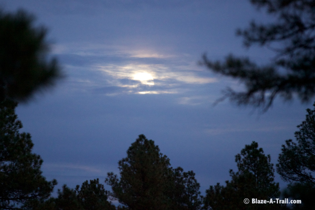 Moon rises along forest road to Hannagan Meadows - Blood Moon later that night!
