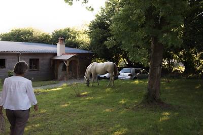 Hacienda et Pascale