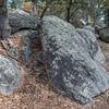 Cap Rock Den