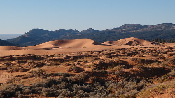 Coral Pink Sand Dunes, Mount Trumbull, On the Road to Toroweap  10.15 & 10.16.12