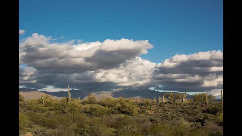 Arizona Desert Winter Storm